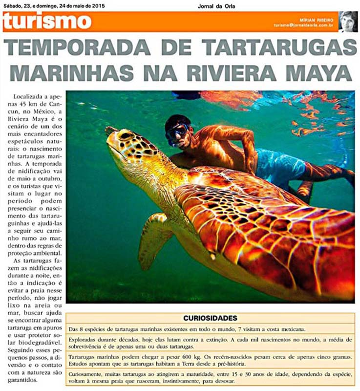 Temporada de tartarugas marinhas na Riviera Maya